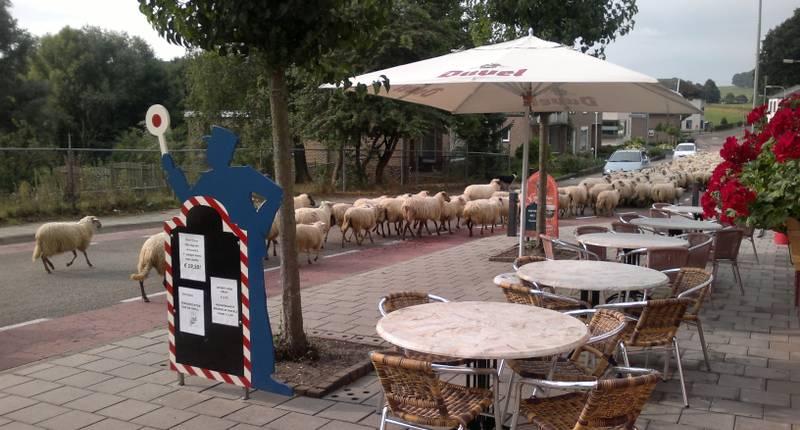 Gasthof Euverem in Gulpen bei HotelSpecials.de